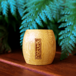 Suporte Biodegradável de Bambu para Escova Dental